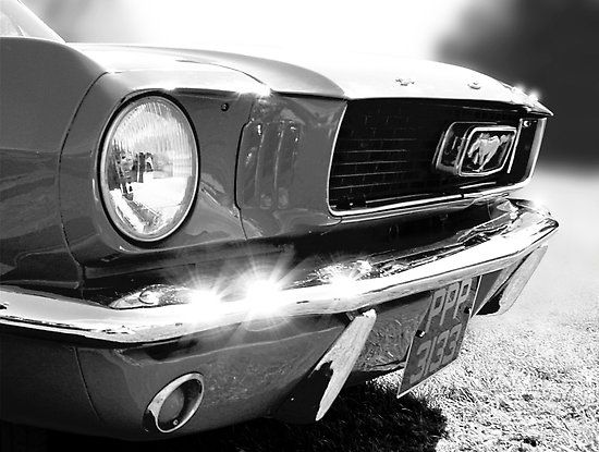 Ford Mustang black & white by Adam North | Ford mustang