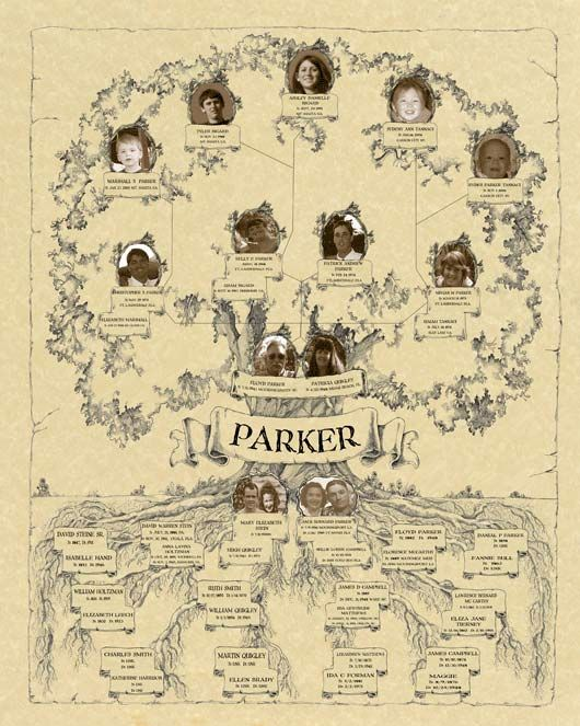 Love This Family Tree Descendants Go On The Branches Upwards