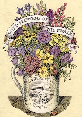 Wildflowers of the chalk. 1947. King Penguin.