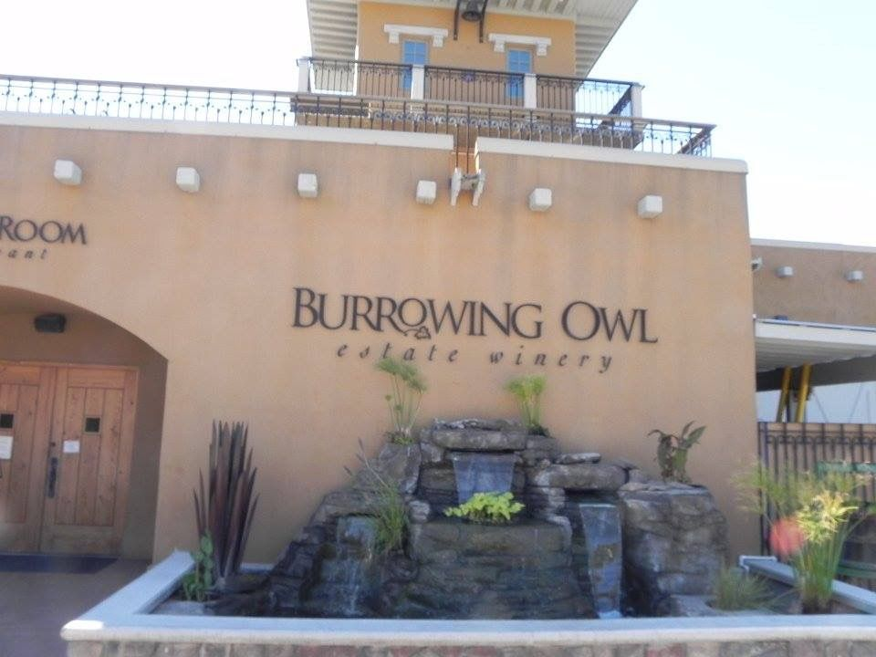 Burrowing Owl winery Oliver