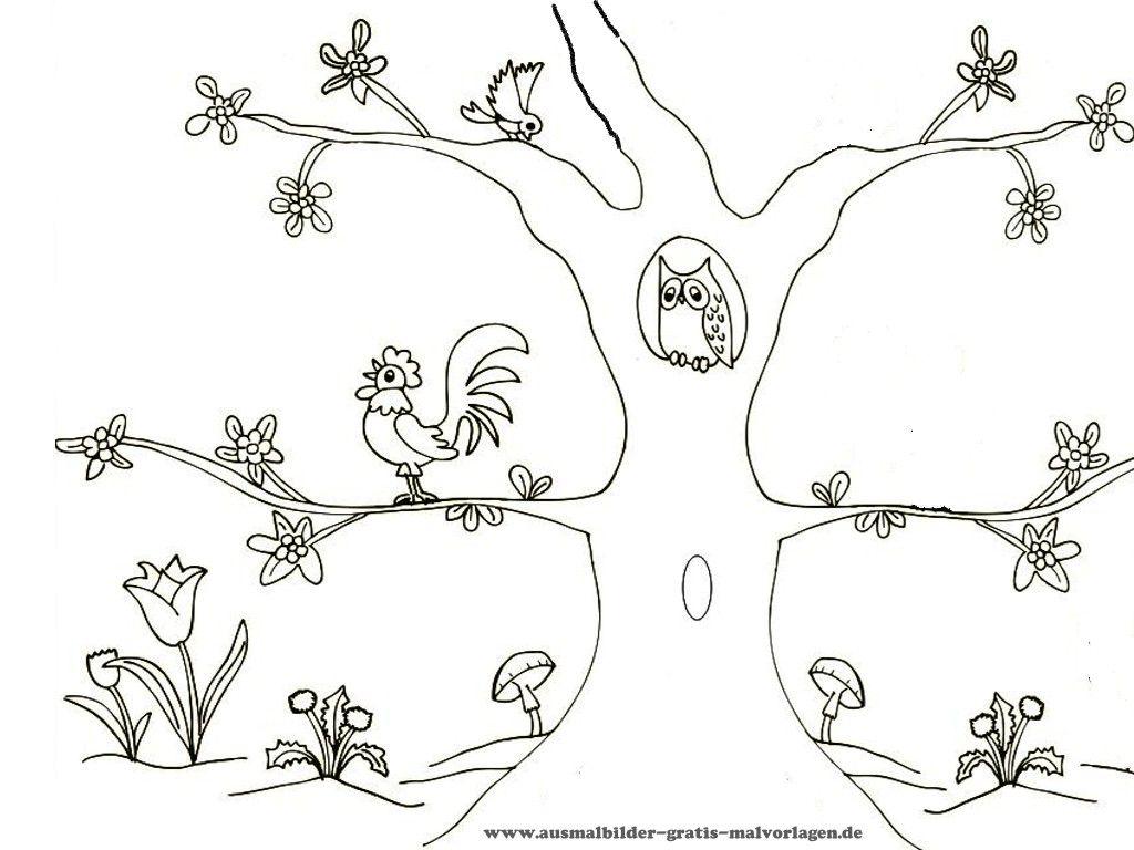 kostenlose Ausmalbilder Tiere gratis Malvorlagen | birds coloring ...