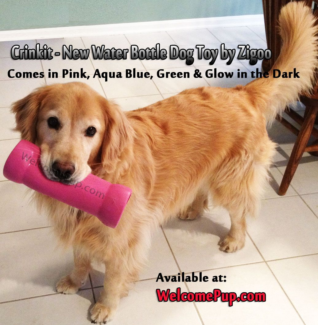 New dog toy by Zigoo called the Crinkit. Water bottle dog