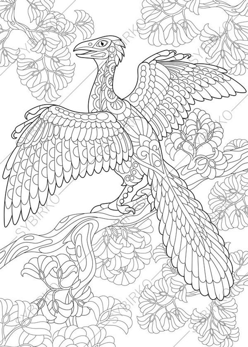 Coloring Pages For Adults Archeopteryx Dinosaur Adult Coloring