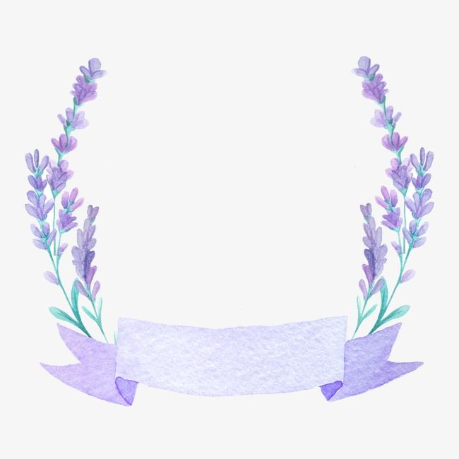 Beautiful Lavender Lavender Purple Flower Purple Png Transparent Clipart Image And Psd File For Free Download Flower Graphic Design Floral Border Design Flower Graphic