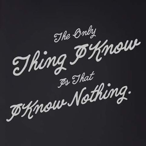 The Only Thing I Know Is That I Know Nothing Quotes Quote