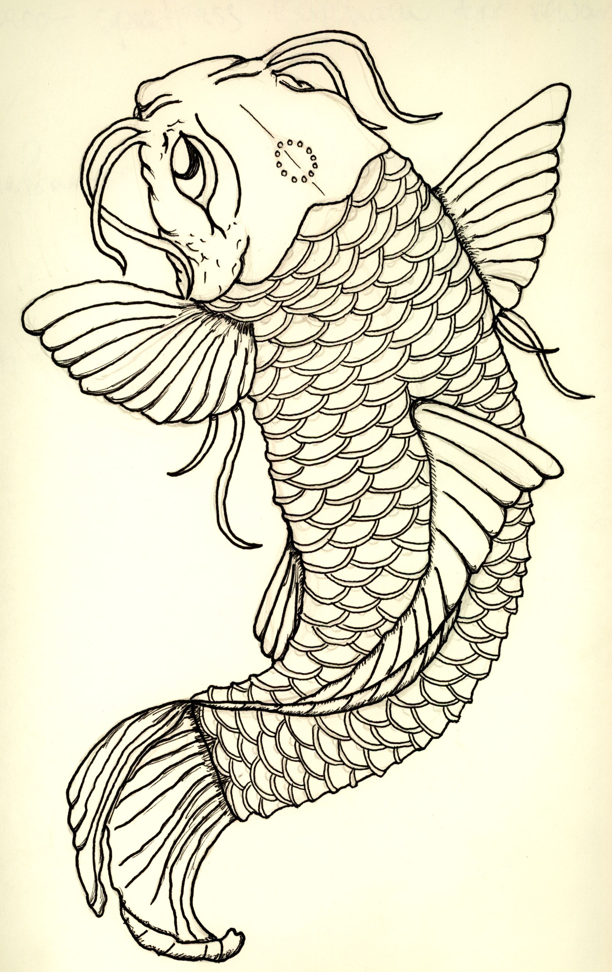 Koi tattoos have long been symbol of strength of for Koi fish drawings