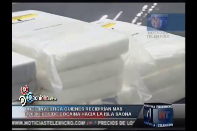 DNCD Investiga Quiénes Recibirían Más De 1,200 Kilos De Cocaína Hacia La Isla Saona #Video