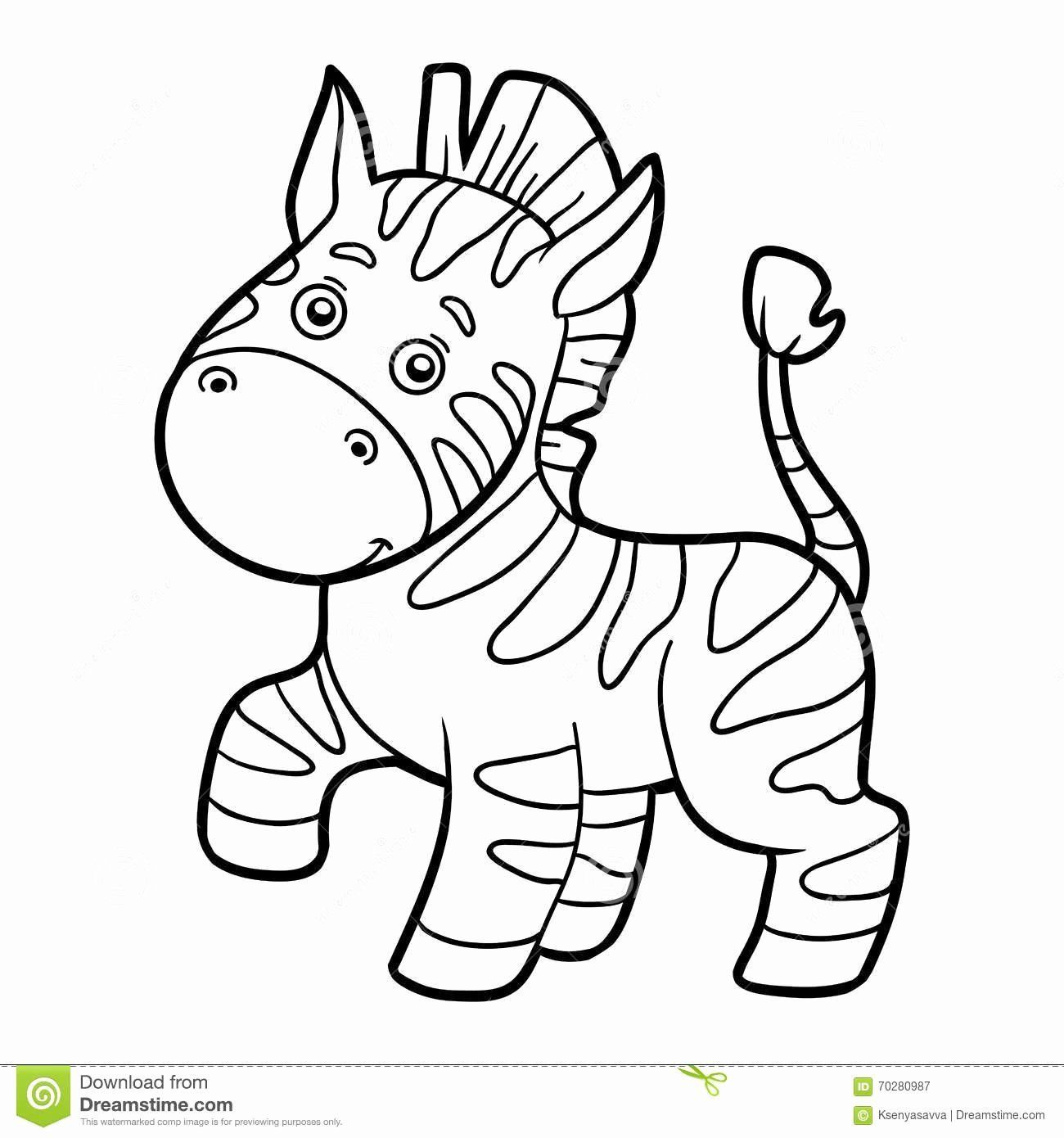 Baby Zebra Coloring Pages Inspirational Coloring Book Coloring Page Zebra Stock Vector In 2020 Zebra Coloring Pages Cartoon Coloring Pages Animal Coloring Pages