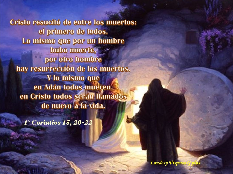 #HoraSEXTA #LiturgiaDeLasHoras  http://www.liturgiadelashoras.com.ar/sync/2016/abr/09/sexta.htm INVOCACIÓN INICIAL V. Dios mío, ven en mi auxilio R. Señor, date prisa en socorrerme. Gloria al Padre, y al Hijo, y al Espíritu Santo. Como era en el principio, ahora y siempre, por los siglos de los siglos. Amén. Aleluya. Himno: VERBO DE DIOS, EL SOL DE MEDIODÍA Verbo de Dios, el sol de mediodía, amable mensajero de tu rostro, fecunda nuestra tierra y la hermosea como fuente de luz, de vida y…