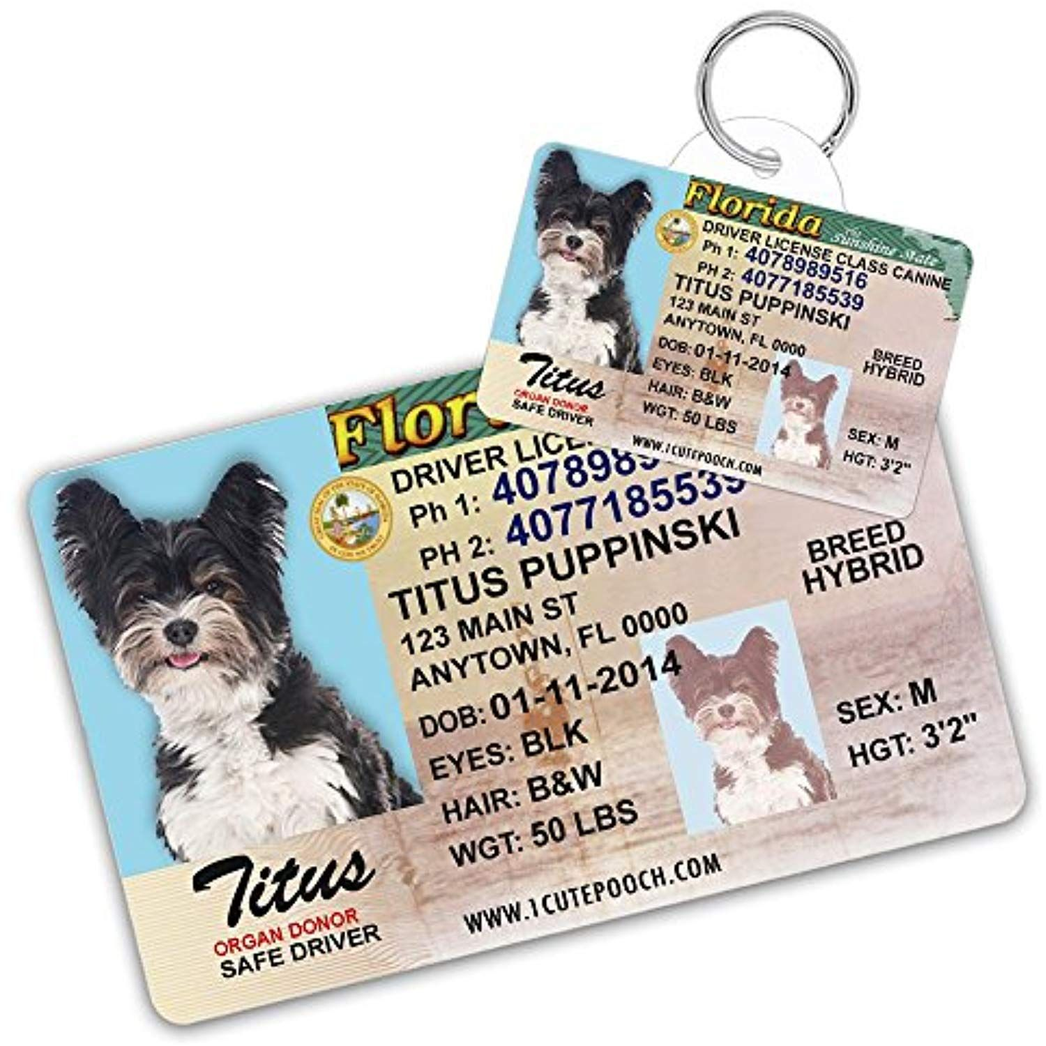 Florida Driver License Custom Dog Tag For Pets And Wallet Card