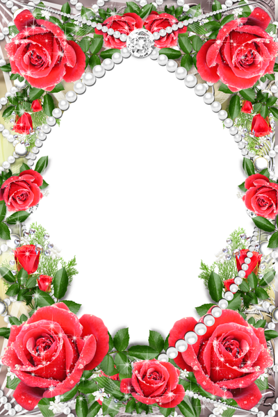 Transparent Delicate Frame with Red Roses Gallery frames