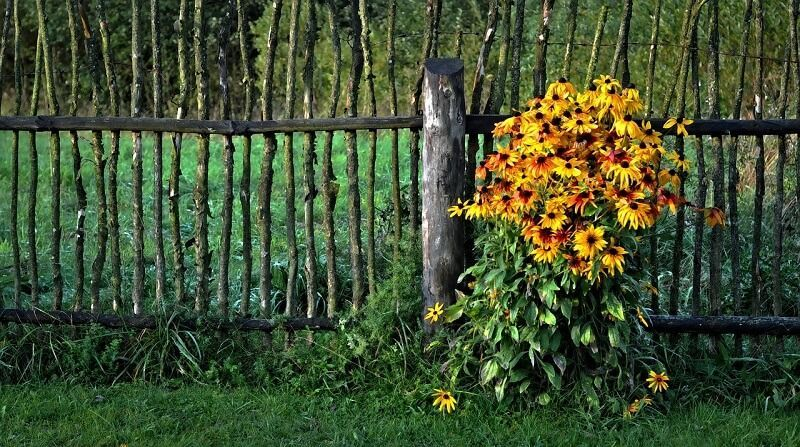 How To Keep Grass From Growing Under Your Fence Soil Tiller Grass Fence