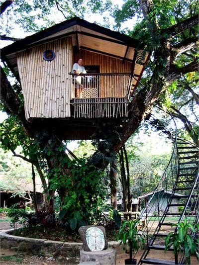 Tree House, Zamboanga City, Mindanao Tree Houses Pinterest - casas en arboles