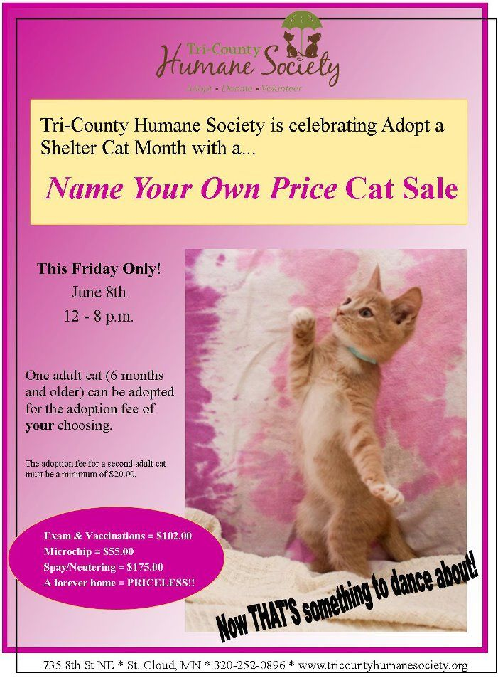 Whether You Re Thinking About Holding Your First Reduced Fee Adoptions Event Or Looking For A New Variation On The F Animal Fundraising Adoption Cats For Sale