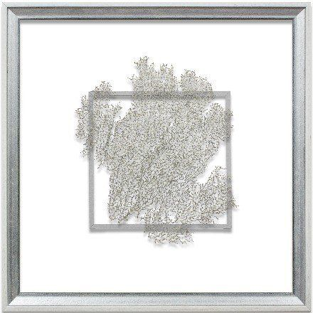 Silver Sea Fan Suspended between Glass in Hand-Distressed White and ...