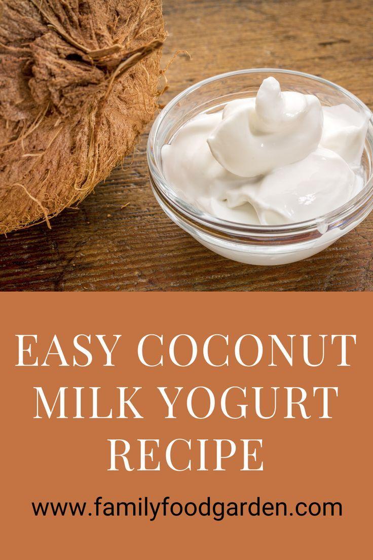 Coconut Milk Yogurt Coconut milk yogurt, Yogurt recipes