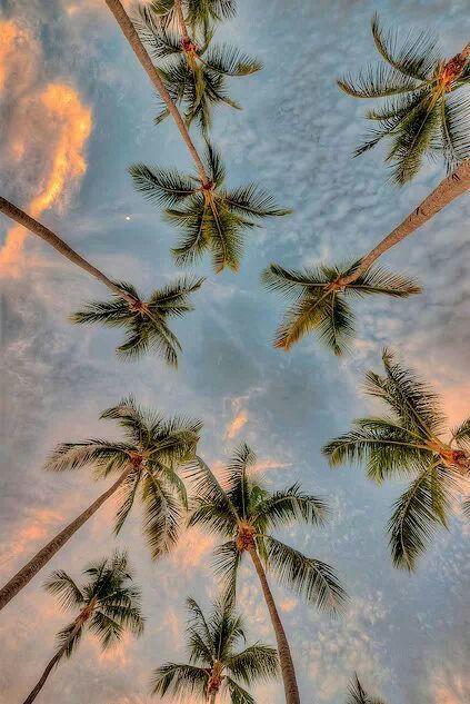 Cielo playa