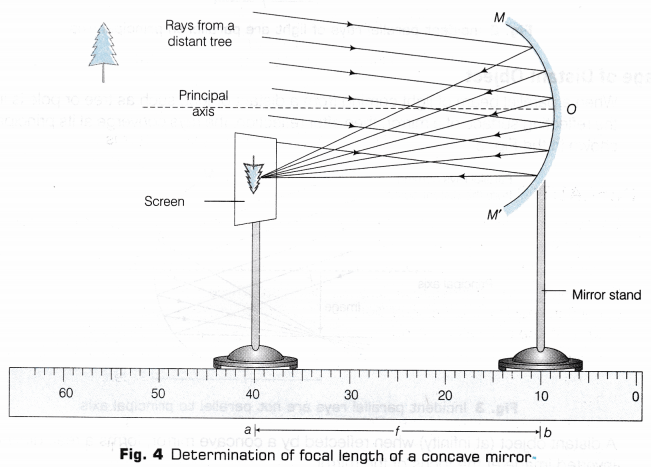 Cbse Class 10 Science Lab Manual Focal Length Of Concave Mirror And Convex Lens A Plus Topper Concave Mirrors Focal Length Science Lab