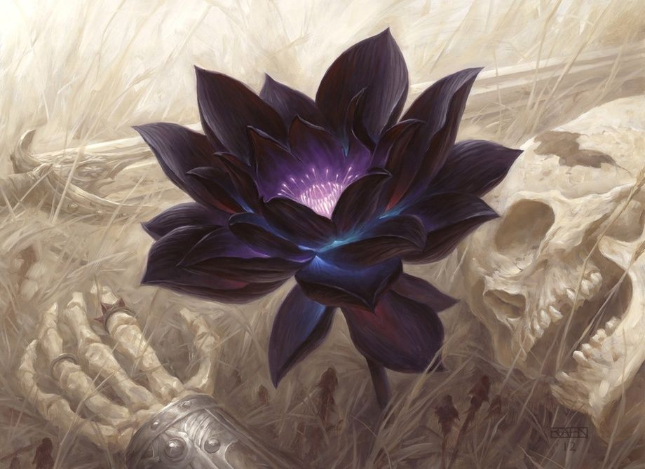 Black Lotus, an art print by Chris Rahn #lotusflower