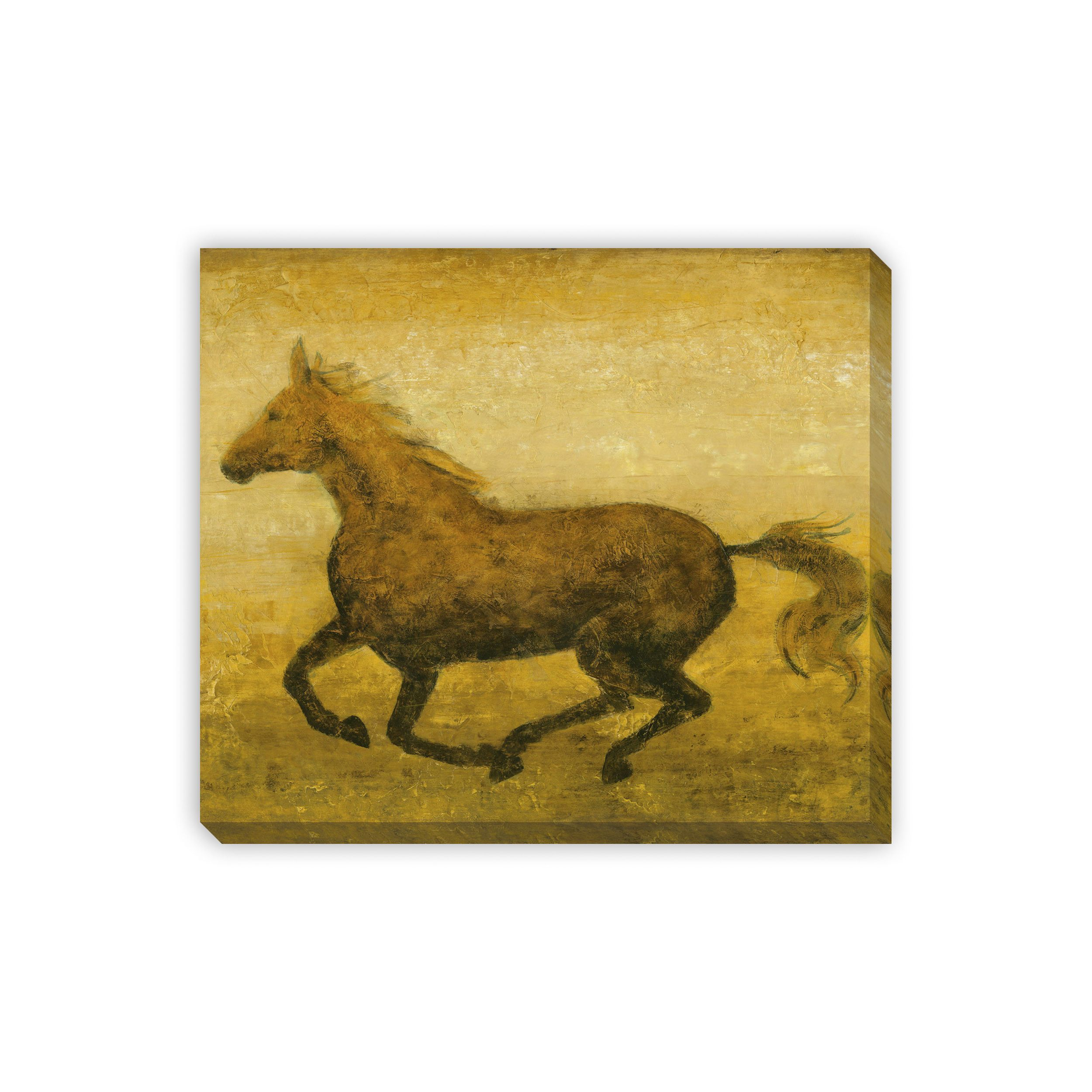 Gallery Direct Equis IV Canvas Gallery Wrap Wall Art | Products ...