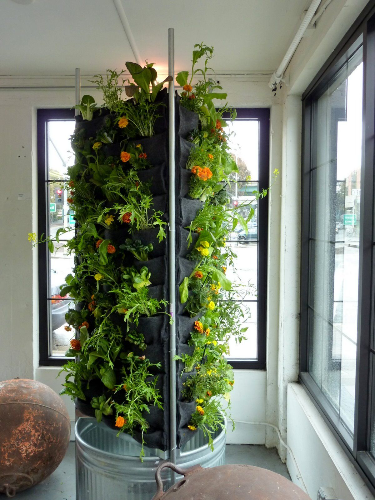 Indoor Vegetable Garden Ideas recycled plastic bottles awesome vertical vegetable garden Find This Pin And More On Gardening Ideas