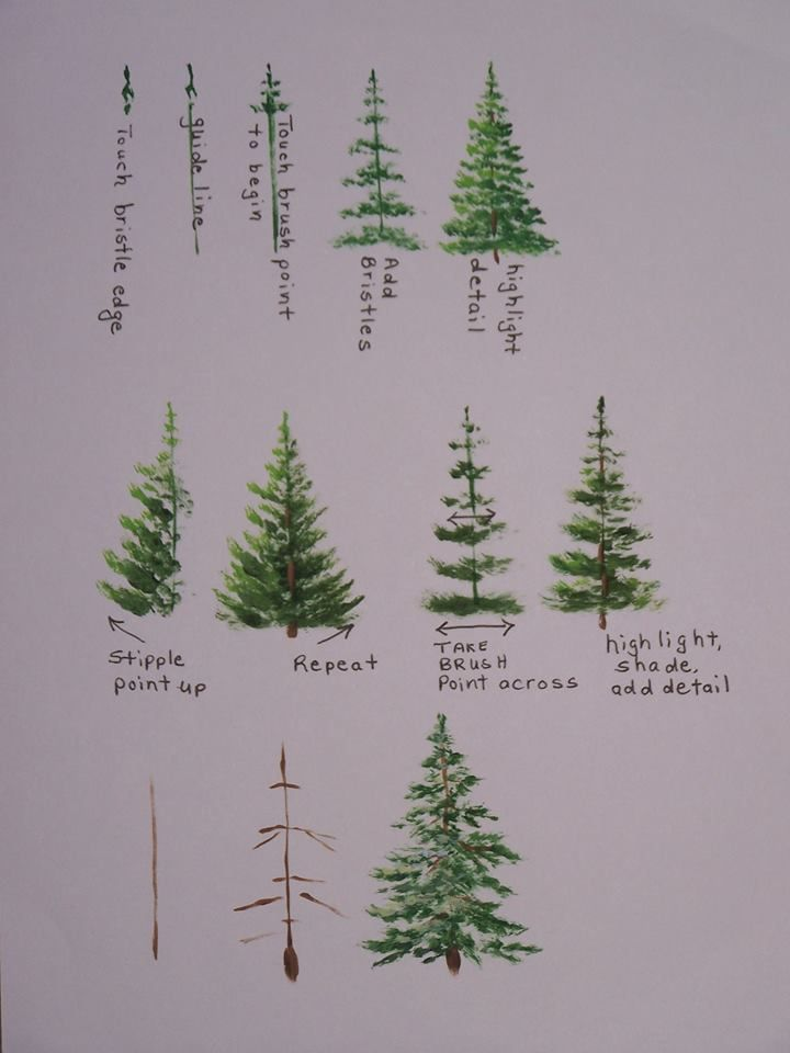 A Forest Of Watercolor Pine Trees Art Artist Artwork
