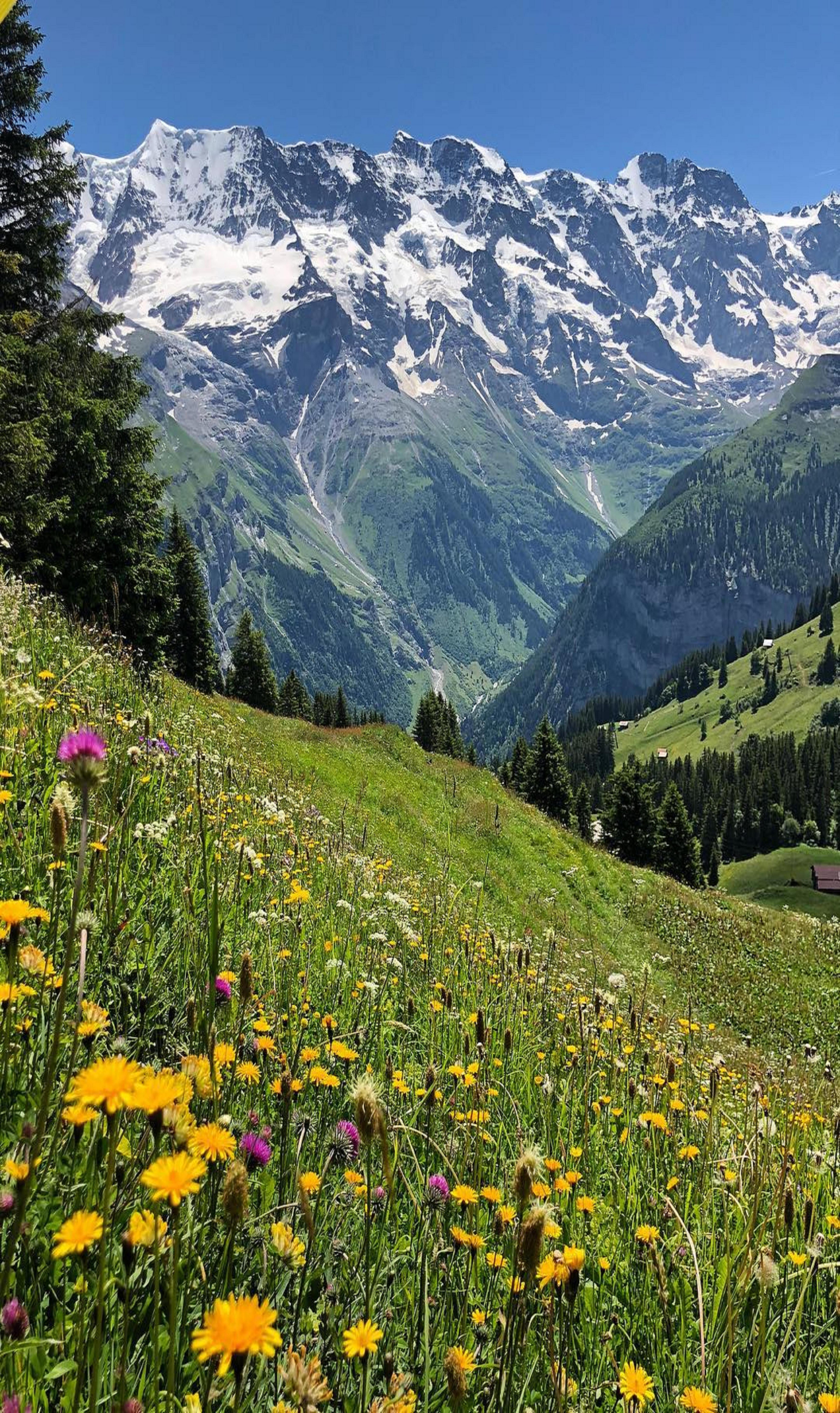 Switzerland Beautiful Landscapes Beautiful Nature Nature Pictures