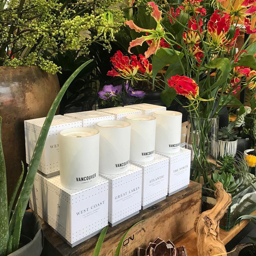 Love their new packaging! @vancouvercandleco .  midtownflorist #torontoflowershop #torontowedding #torontoevents #simplewedding #airplants #dutchtulips #succulents #cactus #freshflower #arrangements #centerpiece #orchids #sansevieria #flowerlover #candle #vancouvercandleco #winteriscoming #giftideas
