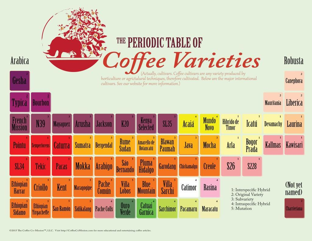 197 best map periodic tables images on pinterest chemical periodic table of coffee varieties the coffee co mission gamestrikefo Image collections