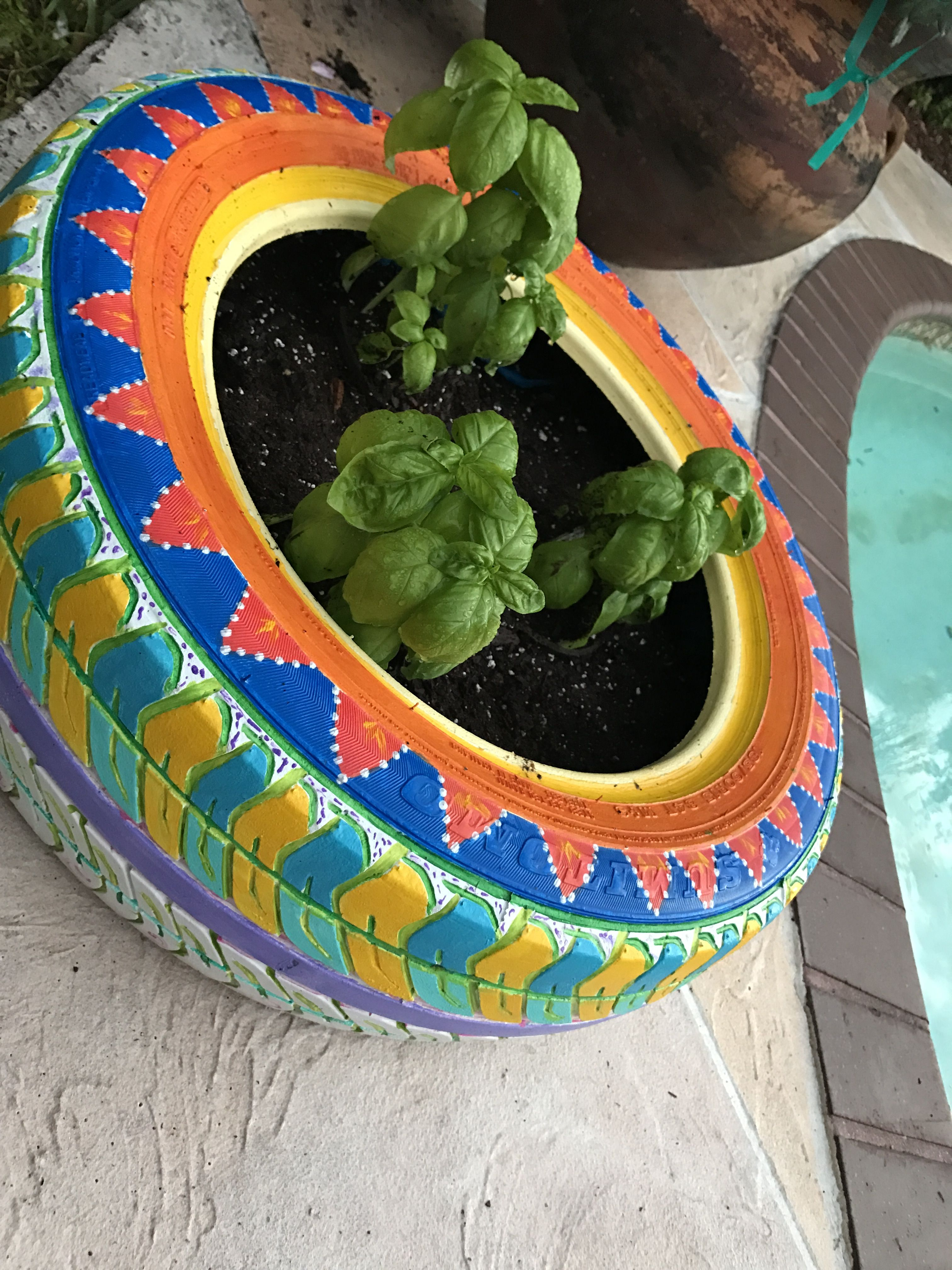 Repurposed Car Tire Painted By Hand And Potted Basil