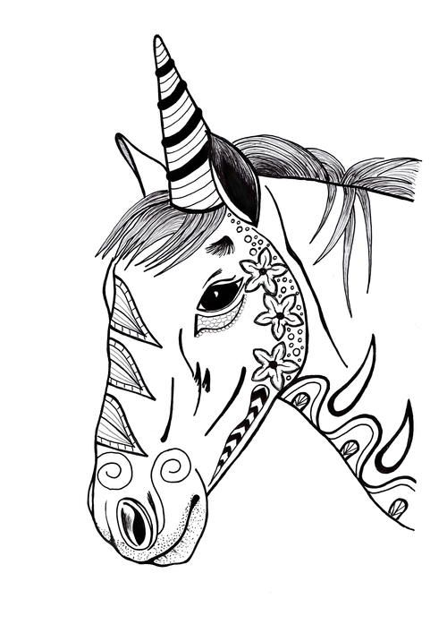 Colorful Unicorn Adult Coloring Page Colouring Stress