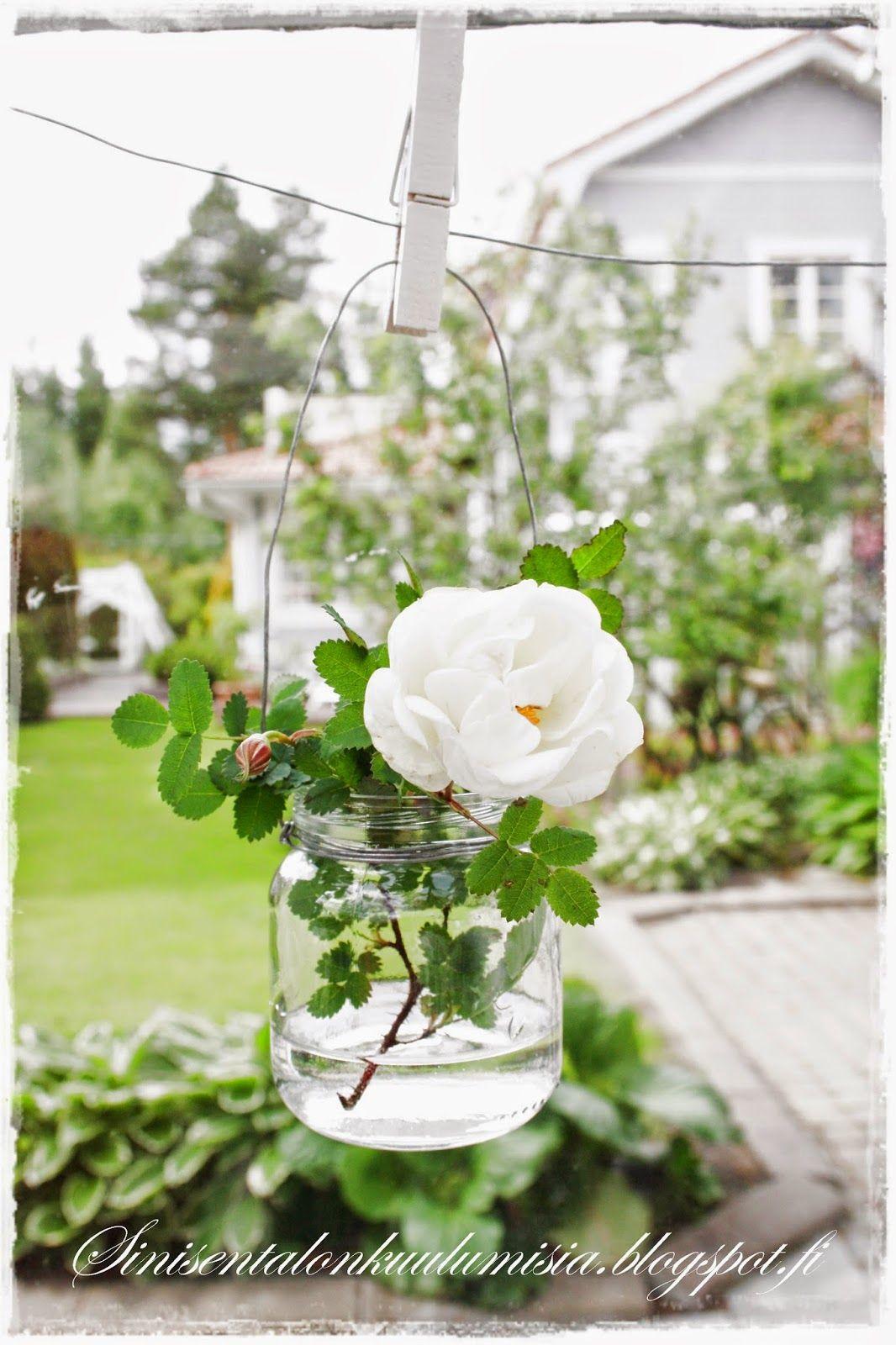 Kukka piltti-purkissa