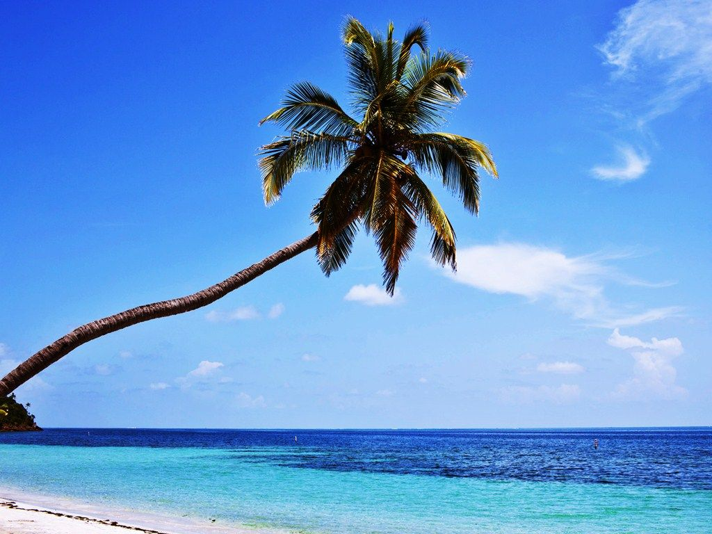 Caribbean Relaxation: Providencia Island In Colombia, Perfect Spot For Some