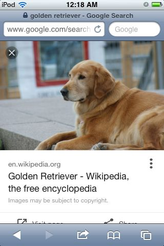 Have a golden