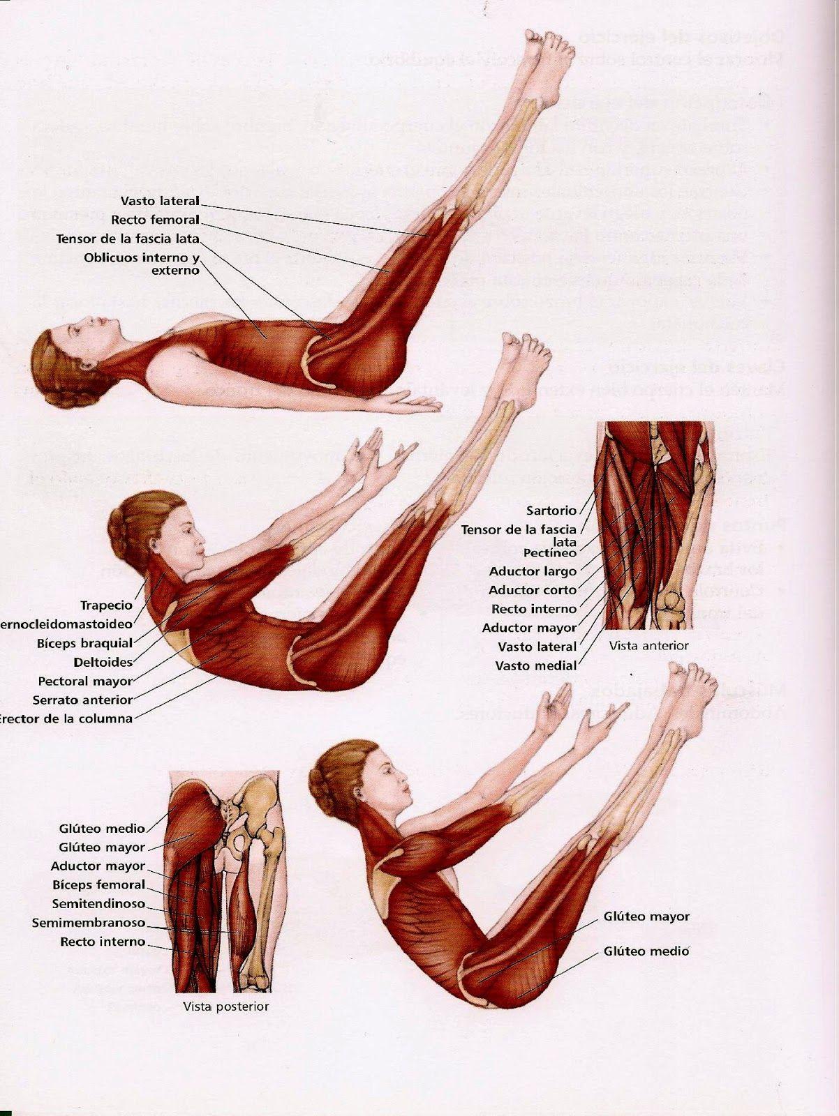 Pilates Marisa: Los básicos de Pilates: The teaser (La V)   Pilates ...