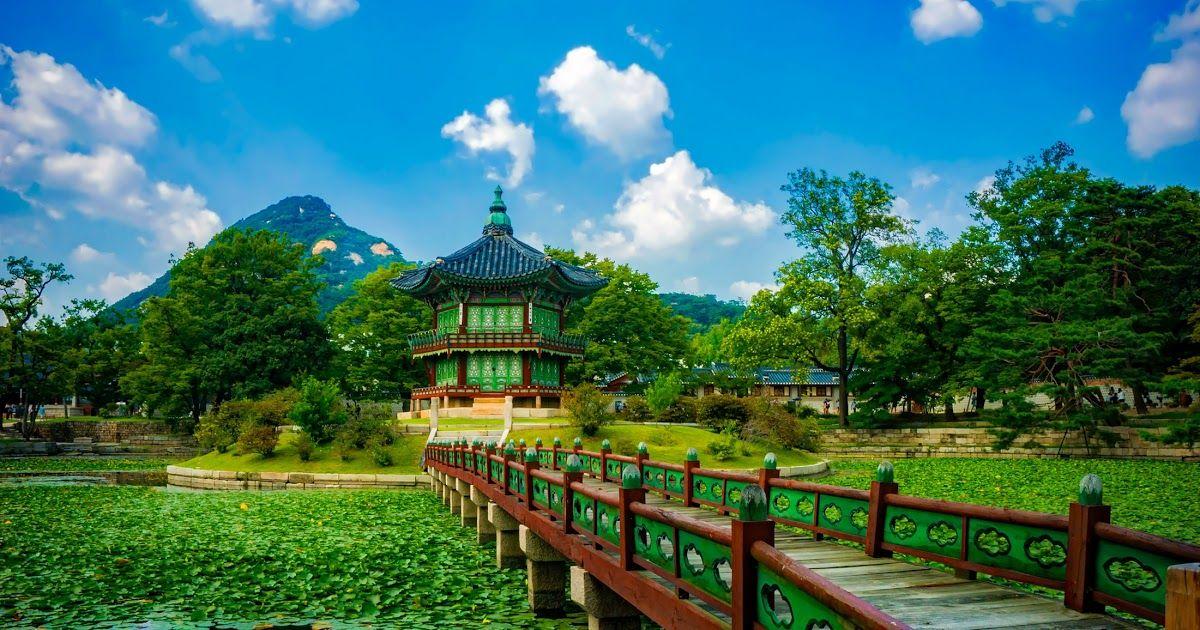 Terbaru 30 Gambar Pemandangan Resolusi Tinggi Gambar Pemandangan Alam Bunga Sungai Refleksi Rimba Download Berkas Keindahan Sawah Ja Di 2020 Pemandangan Ubud Alam
