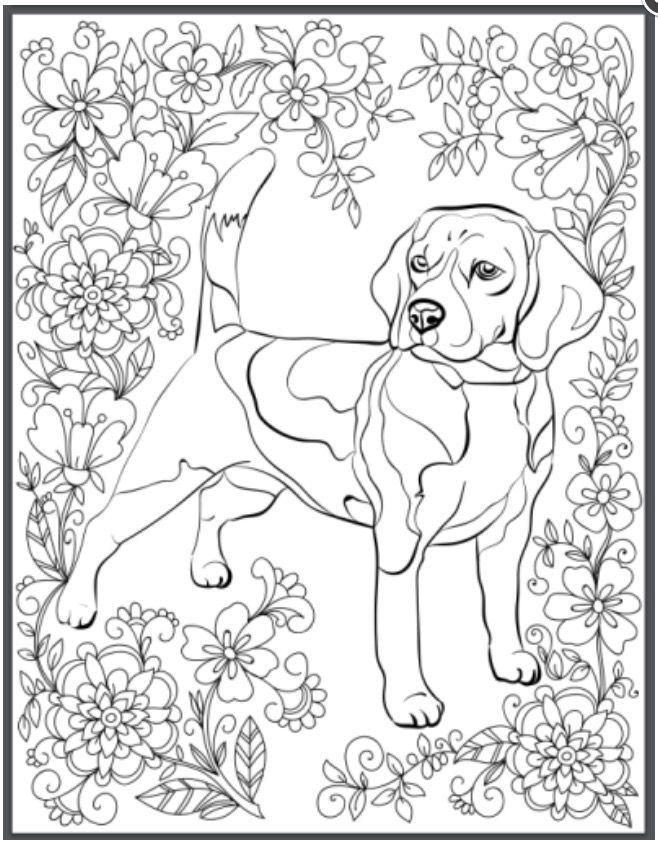 Pin By Carol Valeri On Crafts Dog Coloring Page Animal Coloring