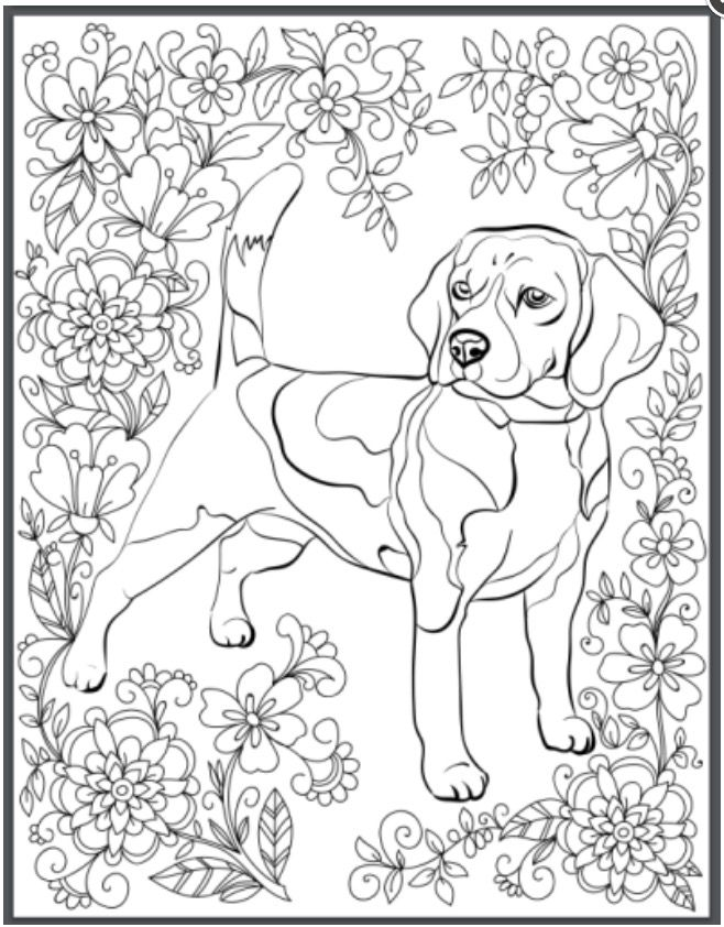 Pin By Carol Valeri On Crafts Dog Coloring Page Animal Coloring