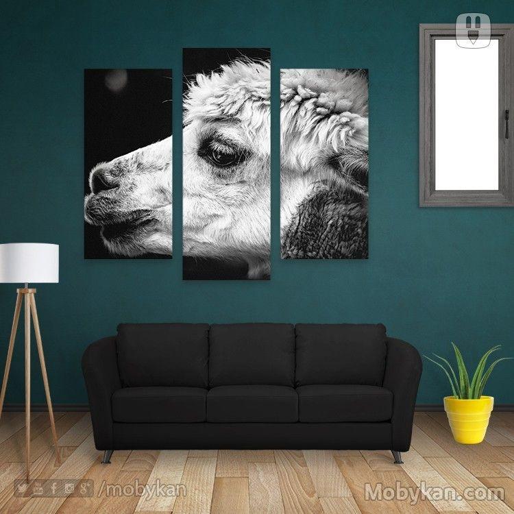Nz Sheep Animal Black And White Animals Black And White Animals Sheep