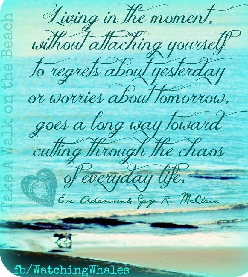 Good Quotes About Living In The Moment: 1000+ Images About Non-Attachment On Pinterest