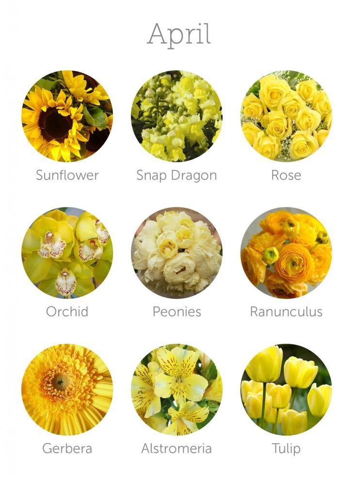 What flowers are in season for weddings in April? | Bouquets ...