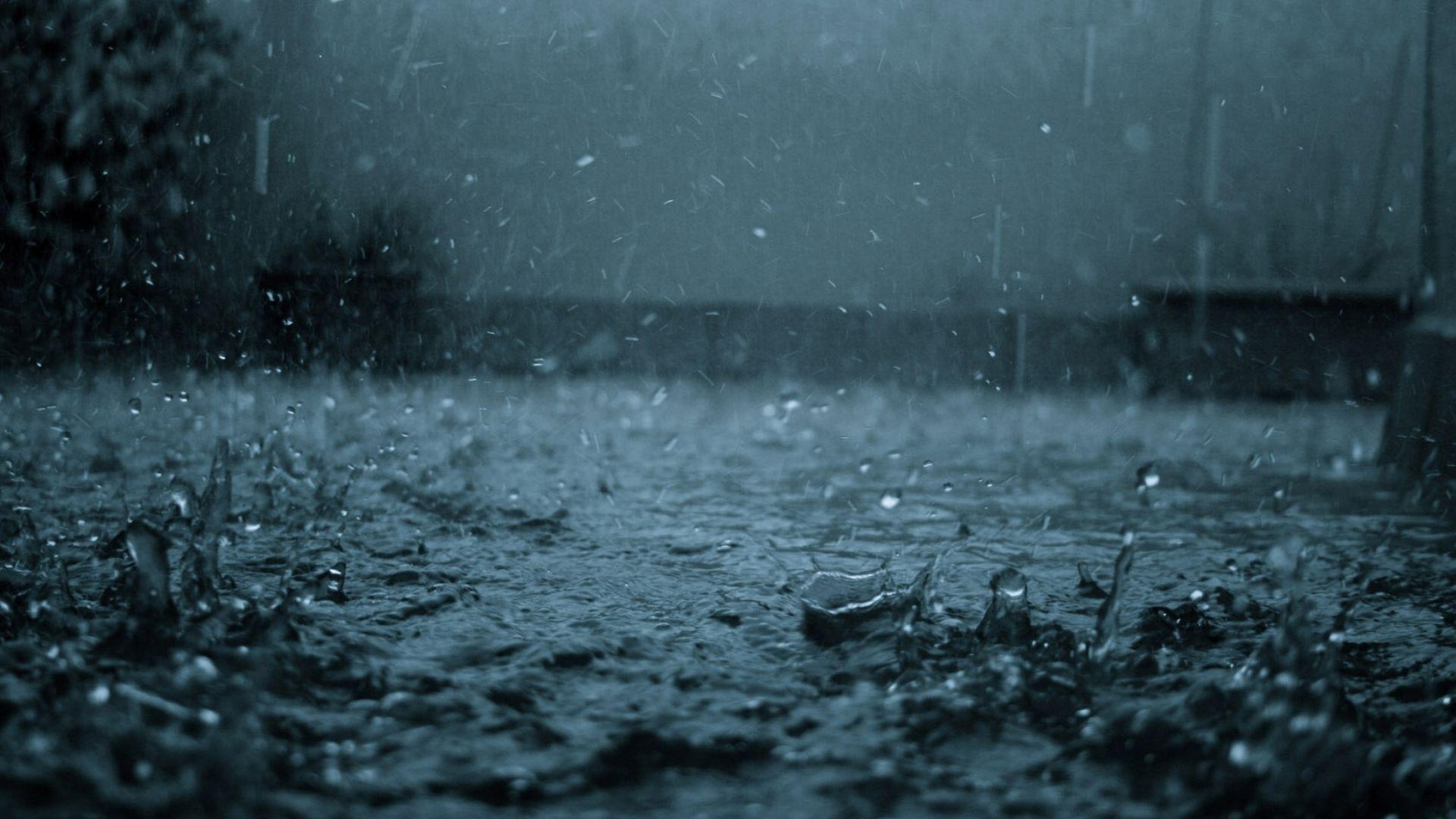 close up leaf leaf form yellow rain drops water glass macro rain