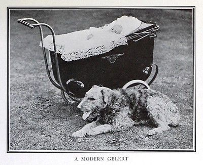 Dog Airedale Terrier Guards Baby In Carriage Rare Antique Print C