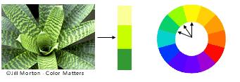Esquema basado en colores  análogos