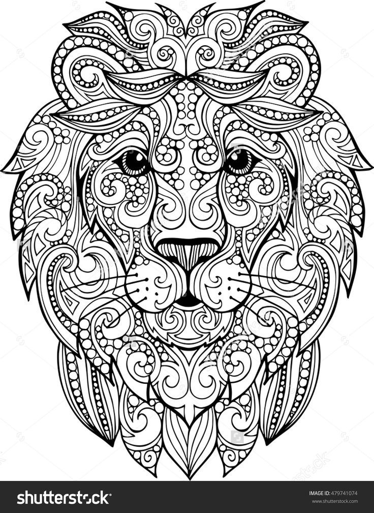 Hand Drawn Doodle Zentangle Lion Illustration Decorative Ornate