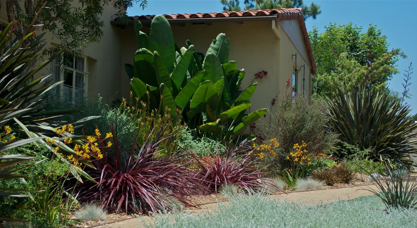 drought tolerant los angeles outside instyle landscape
