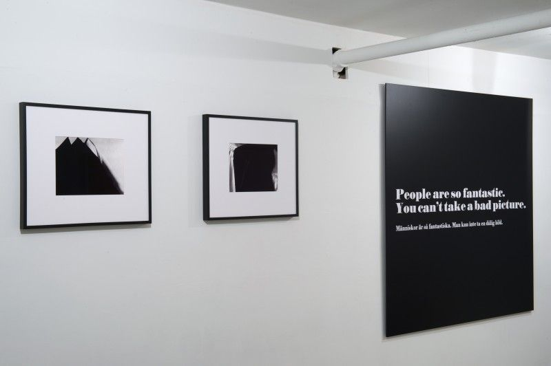 The Bigger Picture, curated by Haim Steinbach