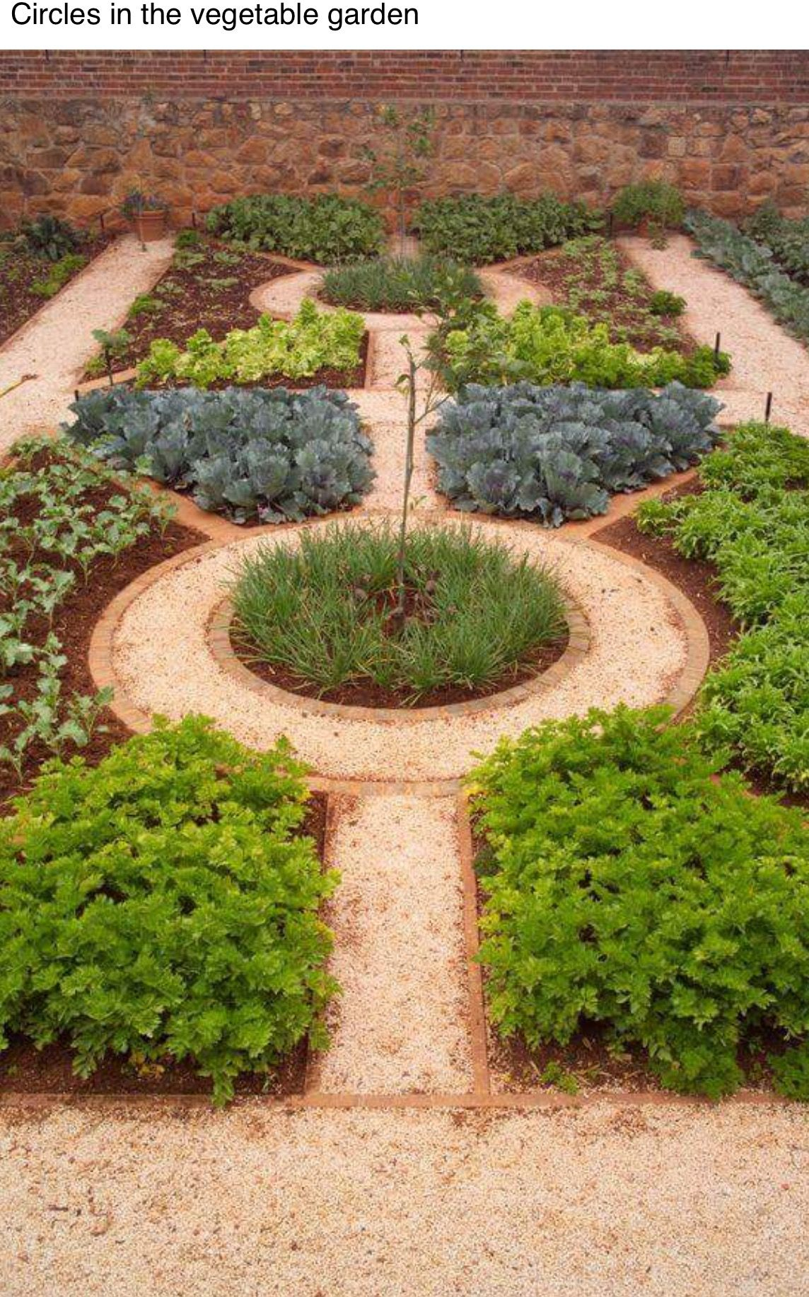 Pin by Pam Guite on Gardening | Herb garden design ...