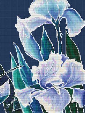 House of White Birches Splendid Florals - Cross Stitch Pattern - 123Stitch.com