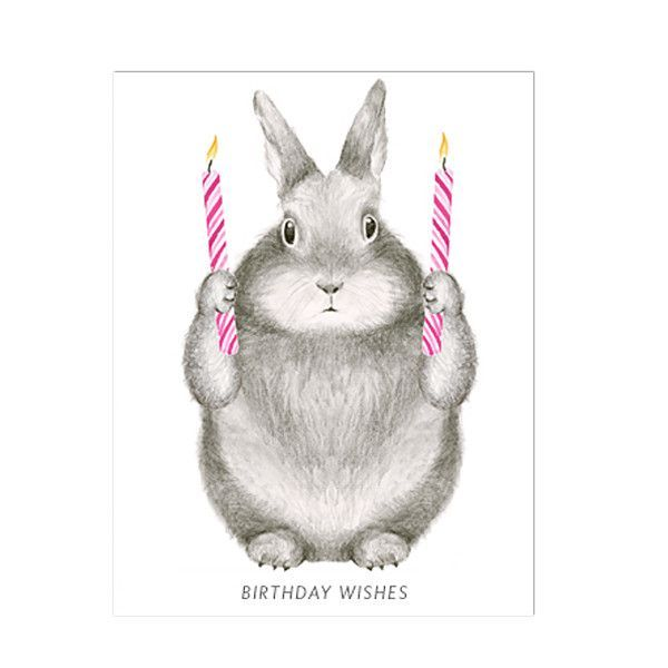 Image result for chinchilla rabbit birthday card